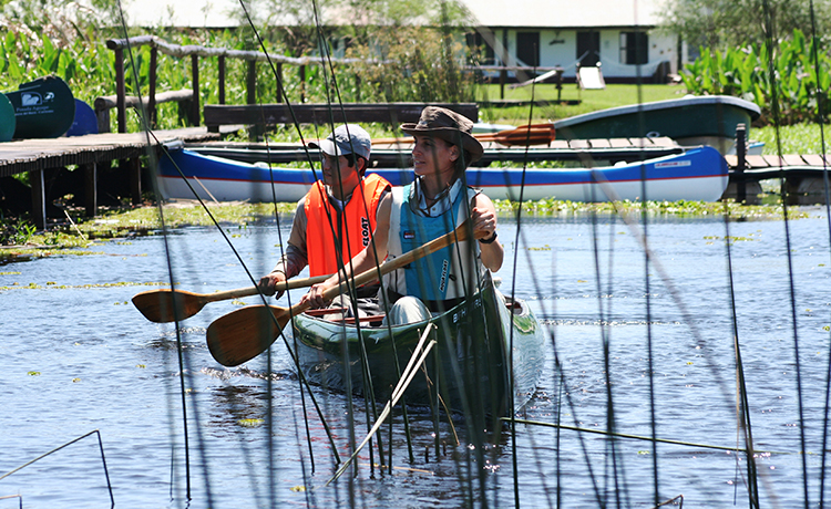 Esteros del Iberá, Corrientes